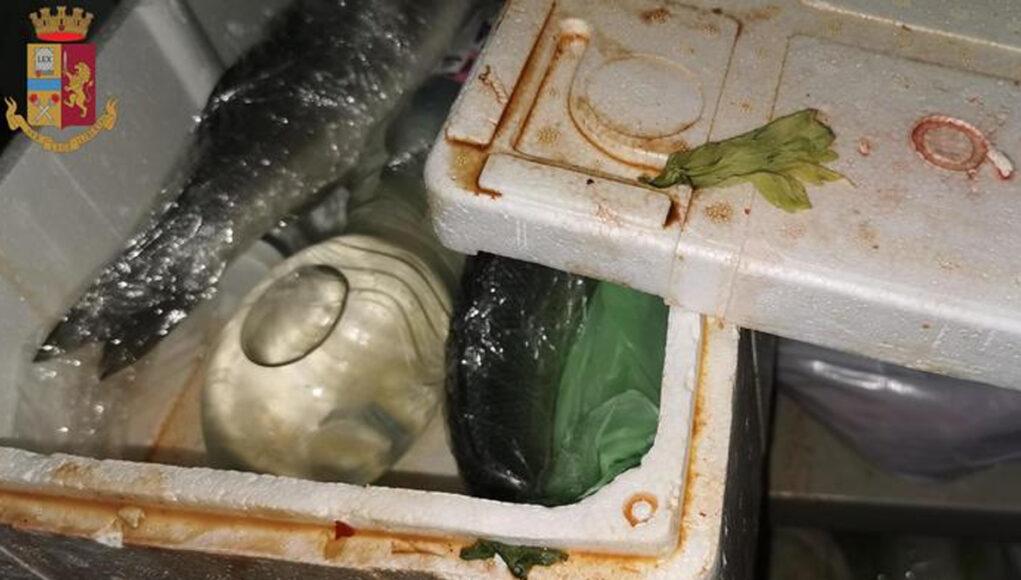 alimenti mal conservati torino