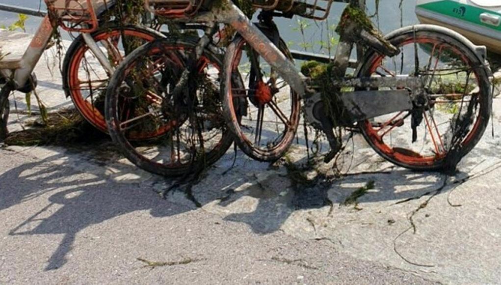 fiume po torino bici monopattini fondale